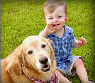 Is Your Dog Friendly? Children Around Dogs.