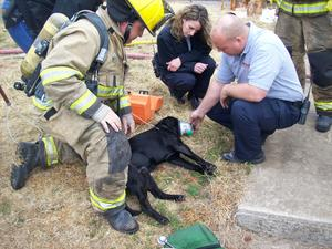 Donated Pet Oxygen Mask Saves Dog Pulled From House Fire