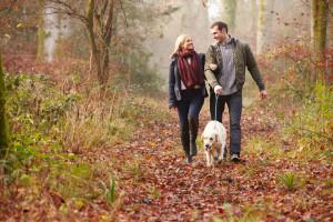 Couple walking dog - Tribune article