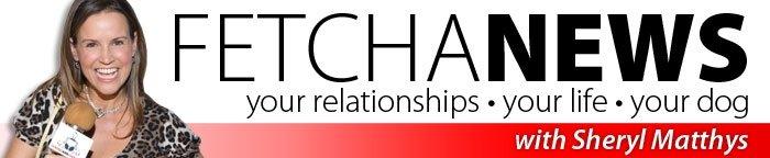 FetchaNews Banner