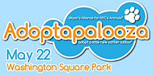 Adoptapalooza Pet Adoption