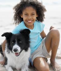 Top 5 Dog Summer Health Concerns