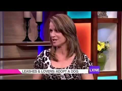 NBC LX TV & Leashes and Lovers