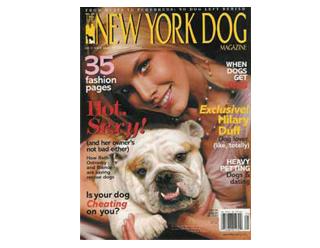 THE NEW YORK DOG (1)