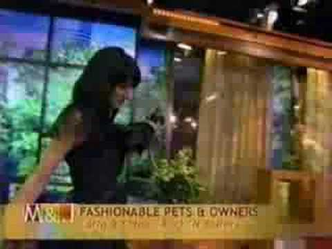 Pet Fashion Show on Morning Show with Mike & Juliette